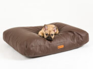 koirantassu koirantyyny-koiranpeti-5