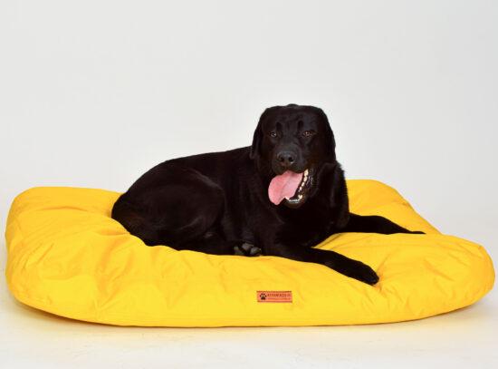 Keltainen koiranpeti pienelle ja suurelle koiralle