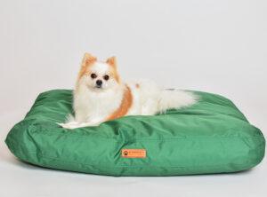 Vihreä koiranpeti pienelle ja suurelle koiralle